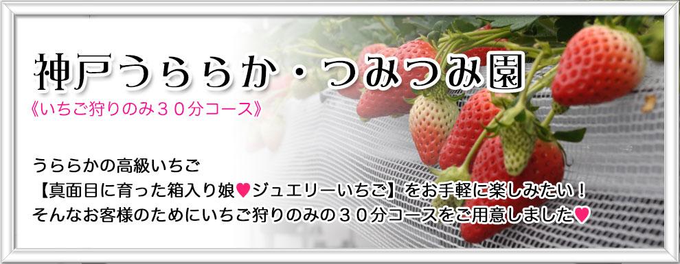 神戸うららか・つみつみ園《お持ち帰り専用棟》 2015年グランドオープン!